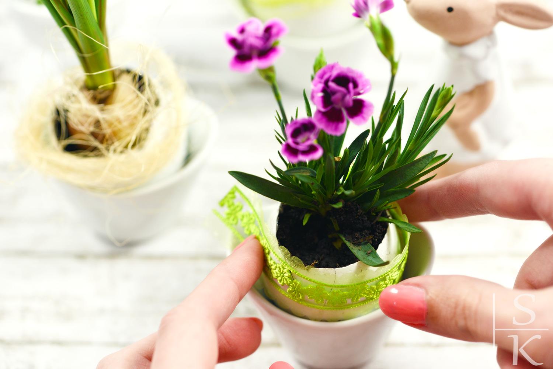DIY Blumentöpfe aus Eierschale